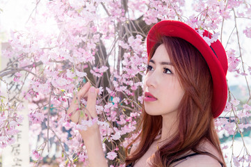 Wall Mural - Beautiful woman among cherry blossom in spring blossom.