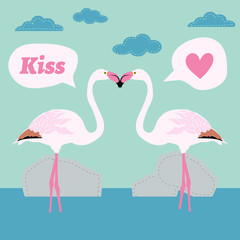 pair of flamingo bird cartoon vector card