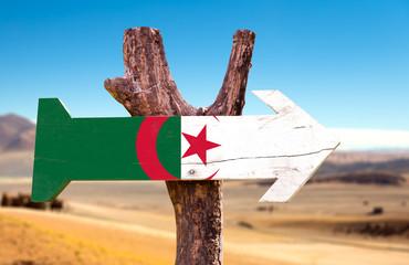 Printed kitchen splashbacks Algeria Algeria Flag wooden sign with dry background
