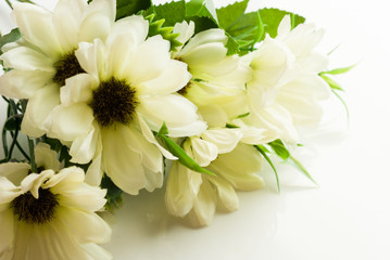 Artificial white flowers background
