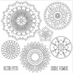 Doodle flowers set.