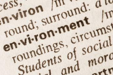Dictionary definition of word environment