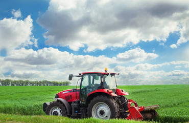Fototapete - Red tractor mows the grass.