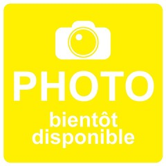 Logo photo jaune
