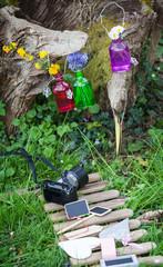 Fotografieren der Dekoration im Garten