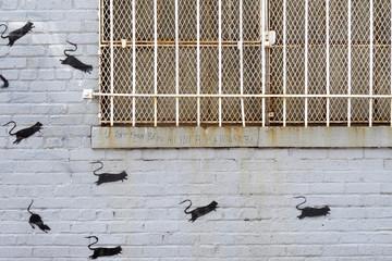 Street art - Bushwick / New York City