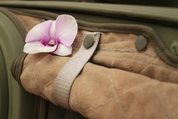 Orchid flower on brown cloth in the garden