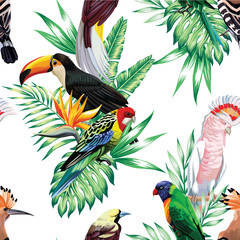 tropical birds and palm leaves pattern