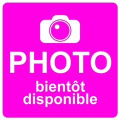 Logo fuchsia : photo bientôt disponible