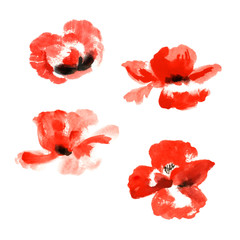 Collection of watercolor poppy flowers