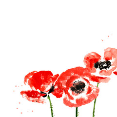 Vector background with red watercolor poppies