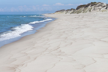 Beach at the Curonian spit