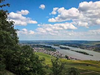 Blick auf ein Städtchen im Rheingau