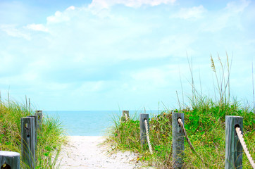 Beautiful beach path scene with sea oats