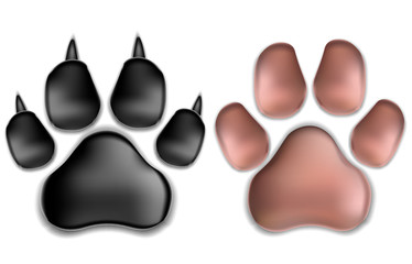 Black and Pink Pads of a Cat with claws. Isolated. Vector Illustration.