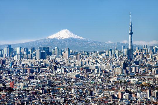 Tokyo Skyline mit Mount Fuji und Skytree
