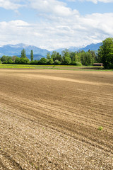 Tilled Field with Snow Covered Peaks of Swiss Alps