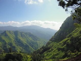 magnificent sight of mountains covered with green grass