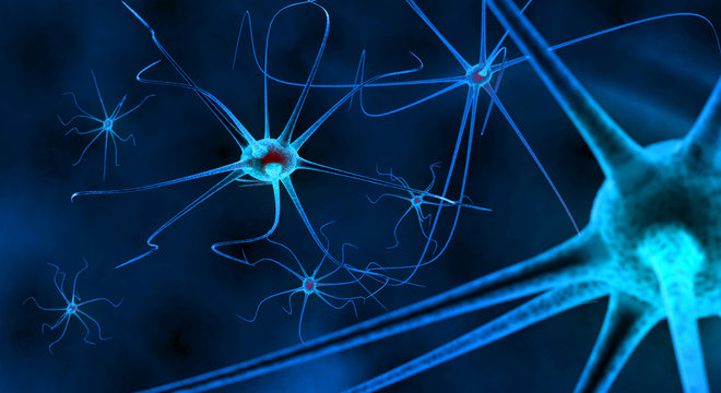 blue nerve cells in human neural system