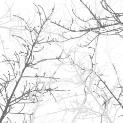 Tree Branches Background Pattern. Vector illustration.