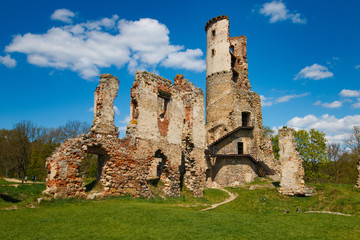 The ruins of the castle Zviretice.