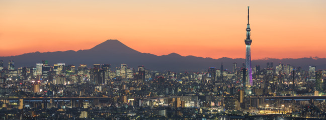 Photo sur Aluminium Tokyo Tokyo cityscape and Mountain fuji in Japan