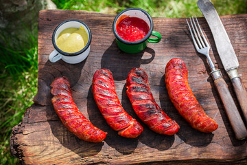 Spicy sausages with spices and rosemary in garden