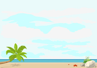 Summer vacation and travel. Palm tree and starfish beach sea