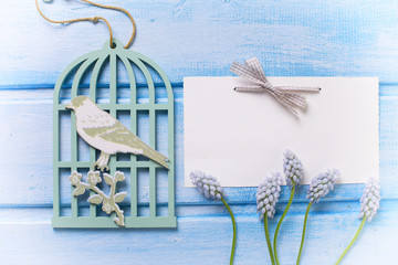 Background with fresh muscaries, dacorative bird cage  and tag