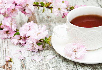 Cup of tea and sakura blossom