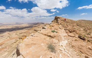 Wall Mural - Woman walking desert mountain edge.
