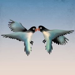 Agapornis fischeri / Two birds fall in love