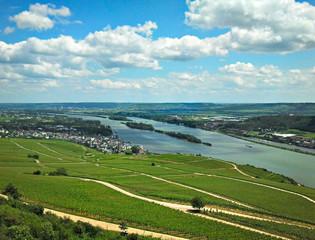 Blick auf den Rhein im Rheingau