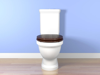 White flush toilet in a bathroom