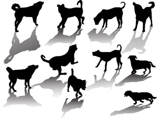 ten black silhouettes of dog with shadows