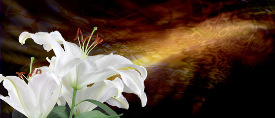 Beautiful lillies with sincere condolences