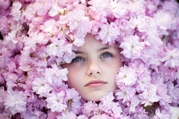 Small girl face among cherry blossom