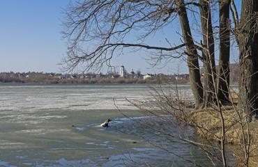 Melting ice on a lake.