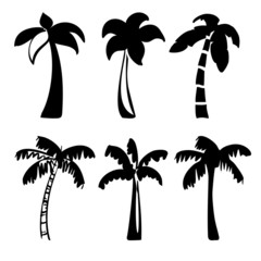 palm  icon sketch cartoon vector illustration