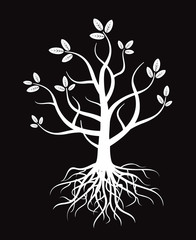 White vector tree and roots.