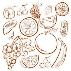 Illustration of doodle set with fruits