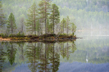 Reflection on a norwegian fiord