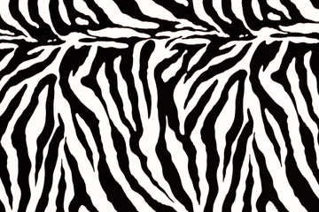 zebra skin pattern for background