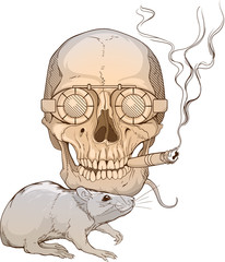 image of a skull with fuming cigar and a rat