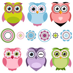 Cute cartoon color owls set