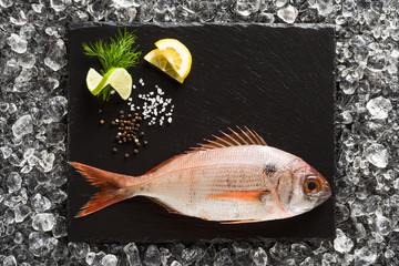 Fresh red snapper fish on a black stone plate top view