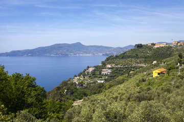 Ligurian coastline, springtime. Color image