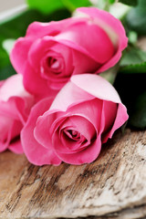 Buket of pink roses on wooden surface