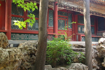 Chinese garden in the Forbidden City (Beijing,China)