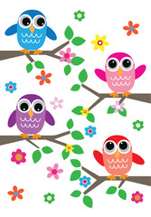 colorful sweet owls